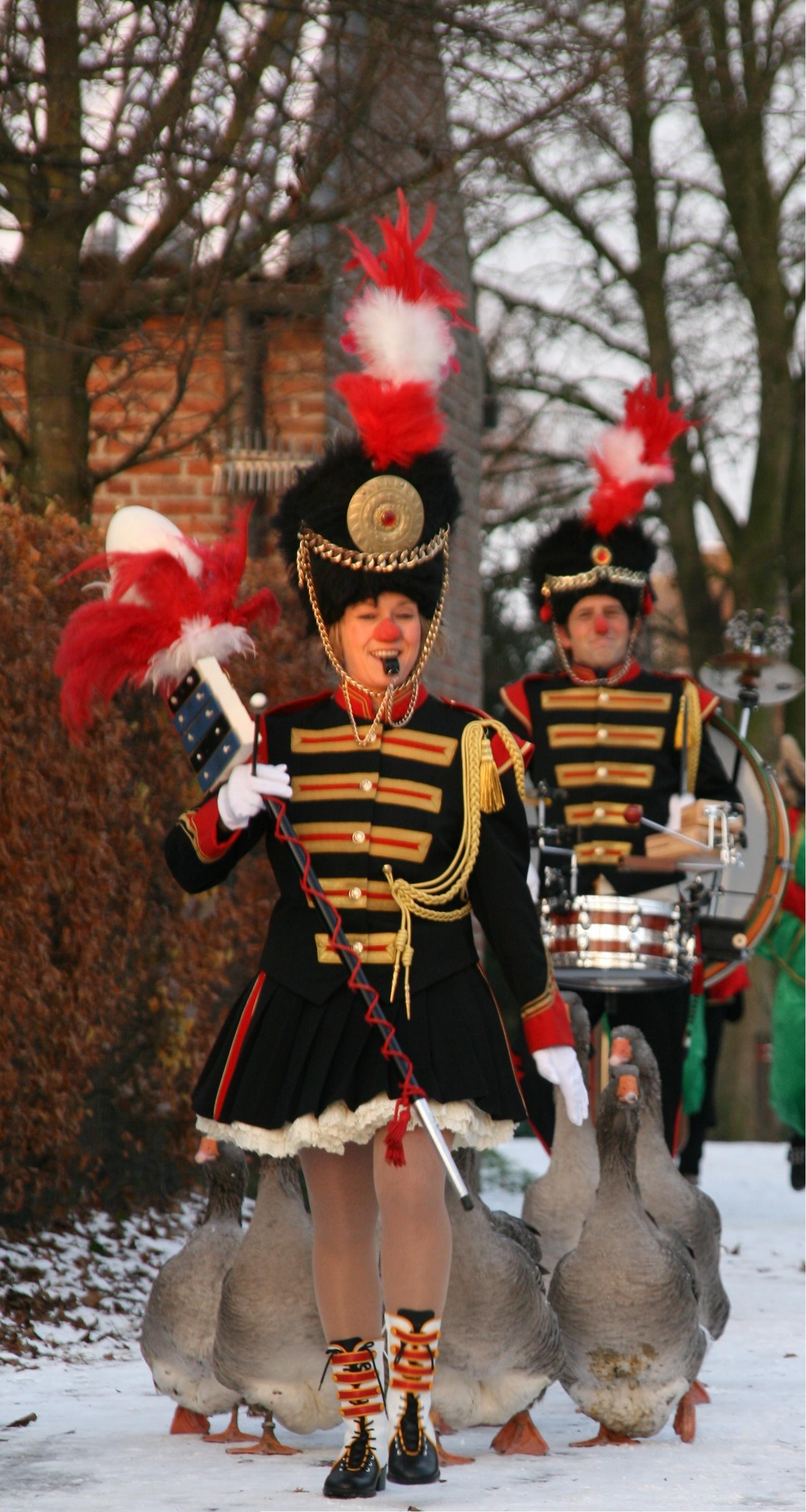 Ganzen parade